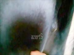 orgy zooskool21
