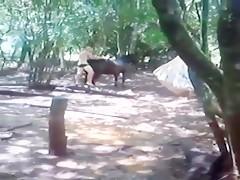 Fun with donkey boy
